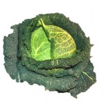 Savoy cabbage, recipe for Savoy cabbage