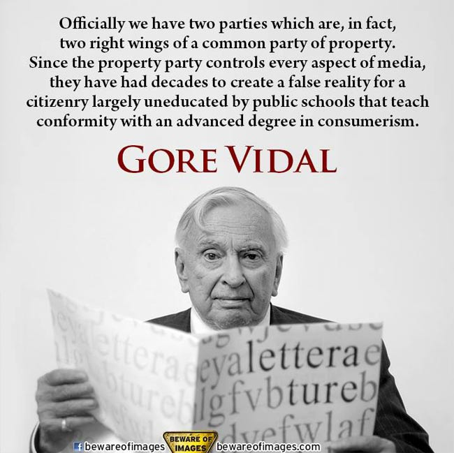 gore vidal on the system, the system