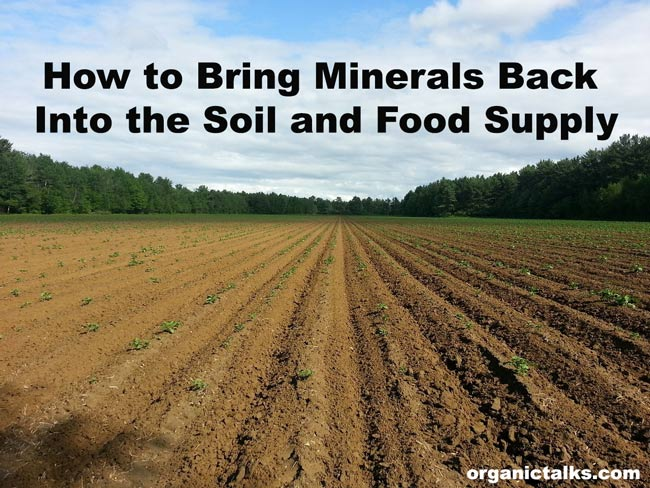 Bring Minerals Back Into the Soil