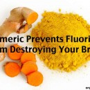 Turmeric Prevents Fluoride From Destroying Your Brain