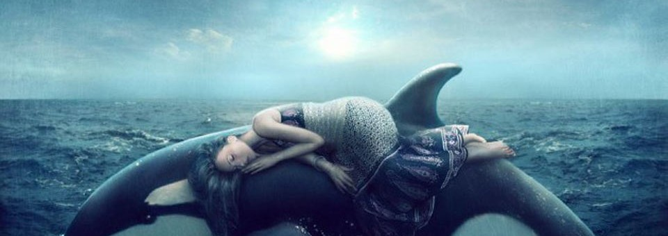 How Dreaming Can Lead to Amazing Creative Breakthroughs