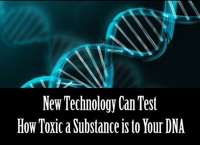 How Toxic a Substance is to Your DNA
