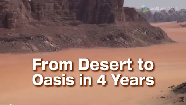 Desert to Oasis in 4 Years