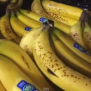 How To Buy & Ripen 40 lbs of Bananas!