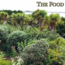 Temperate Climate Permaculture Food Forest