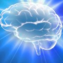 A Neuroscientist Explains What Happens To Your Brain When You Meditate