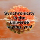 What is Synchronicity?